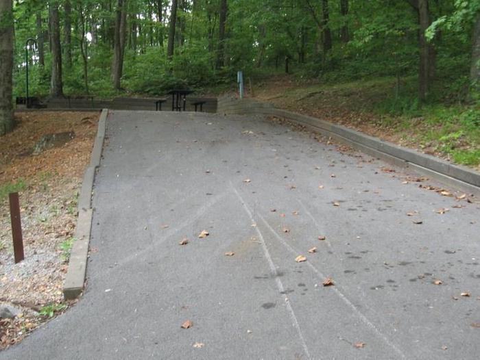 Bailey's Point Site D15