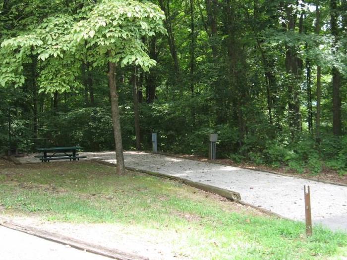 Bailey's Point Site E08