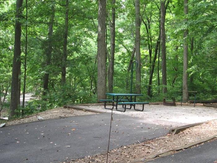 Bailey's Point Site E13