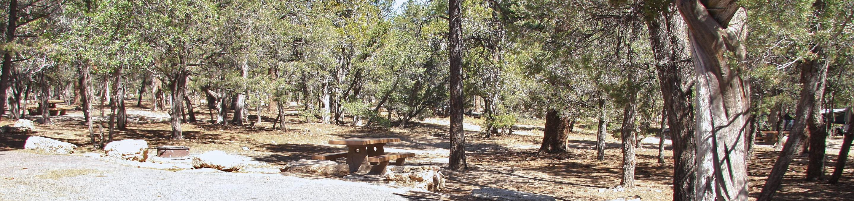 Picnic table, fire pit, and parking spot, Mather CampgroundThe picnic table, fire pit, and parking spot for Aspen Loop 46, Mather Campground