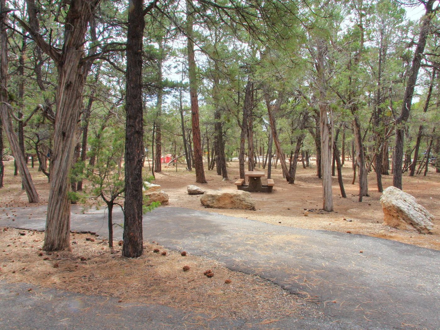 Picnic table, fire pit and parking spot, Mather Campground