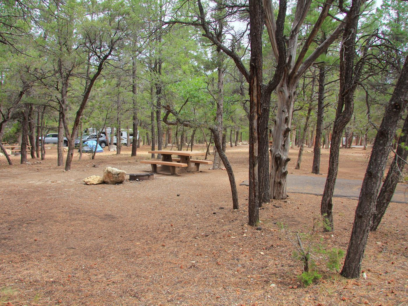 Picnic table, fire pit, and parking spot, Mather CampgroundThe picnic table, fire pit, and parking spot for Aspen Loop 48, Mather Campground