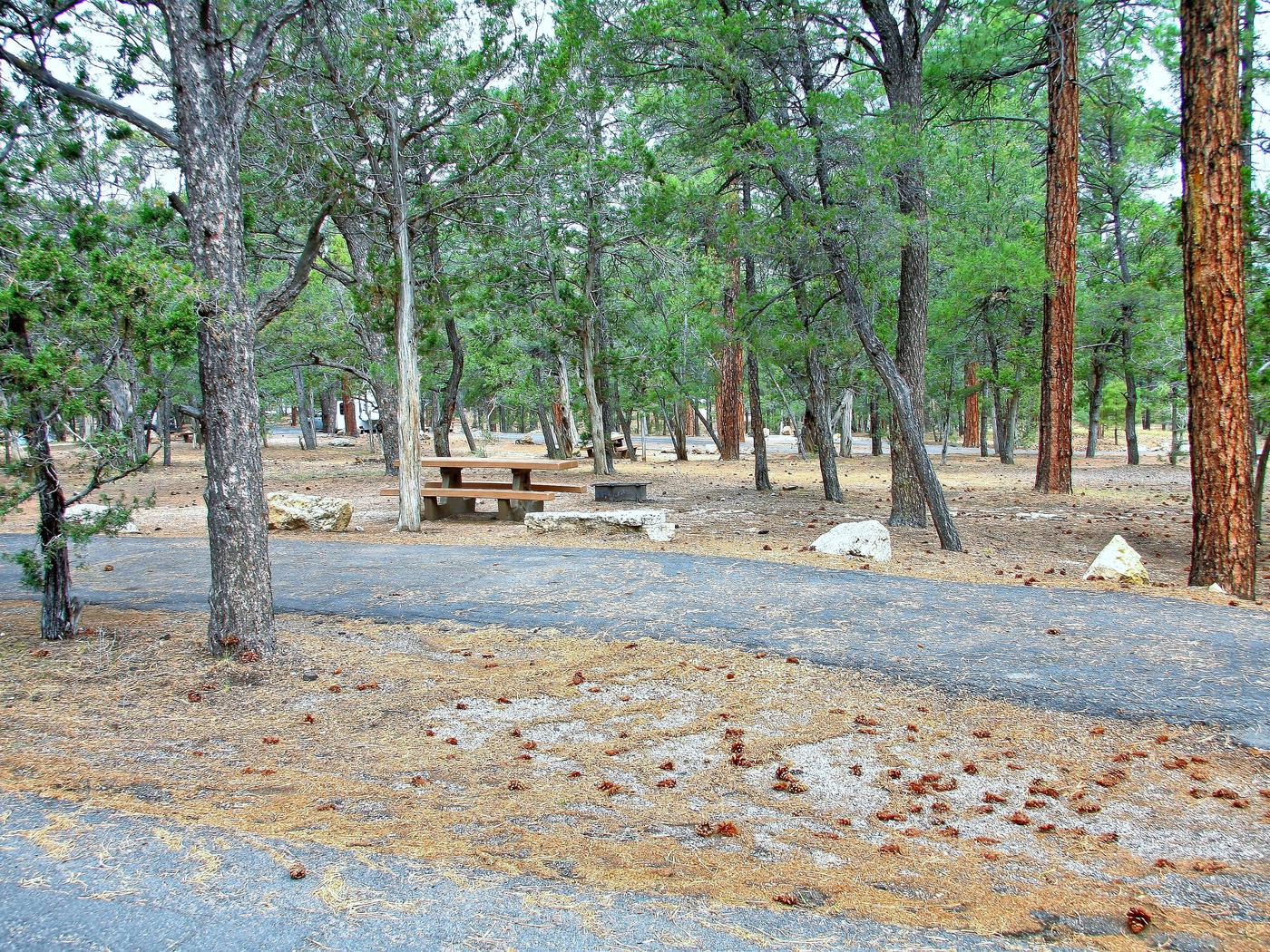 Picnic table, fire pit, and parking spot, Mather CampgroundThe picnic table, fire pit, and parking spot for Aspen Loop 52, Mather Campground