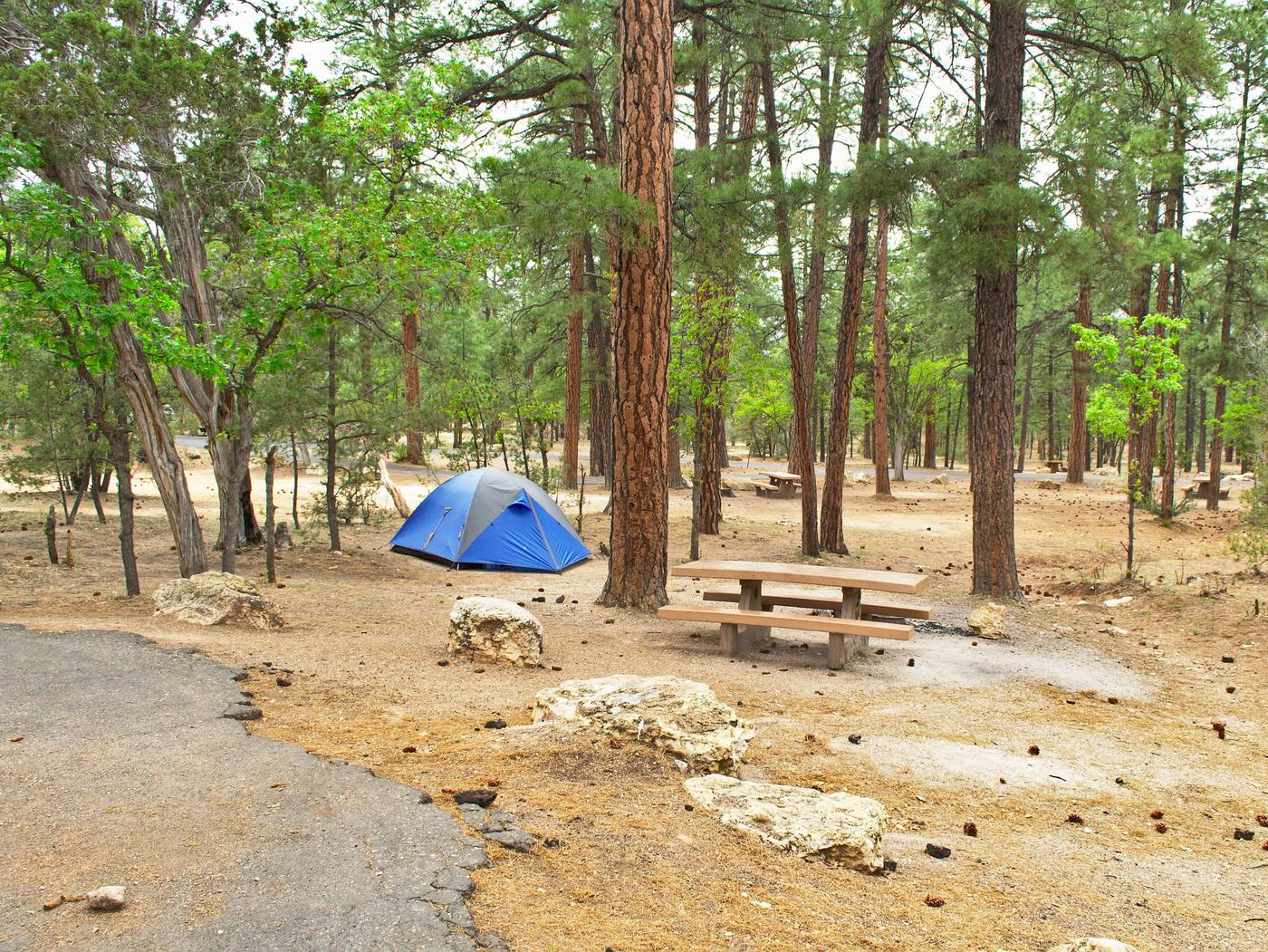 Picnic table, fire pit, and parking spot, Mather CampgroundThe picnic table, fire pit, and parking spot for Aspen Loop 57, Mather Campground