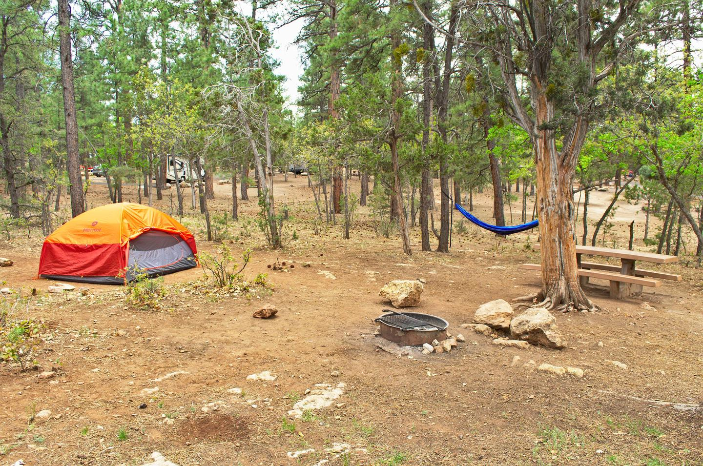 Picnic table, fire pit, tent, and hammock, Mather Campground