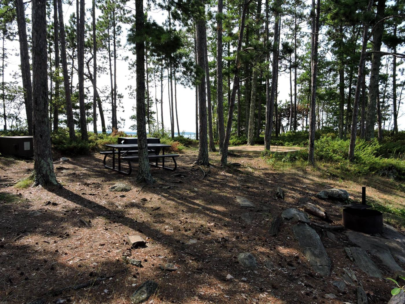 N30 - Pat Smith IslandView of campsite