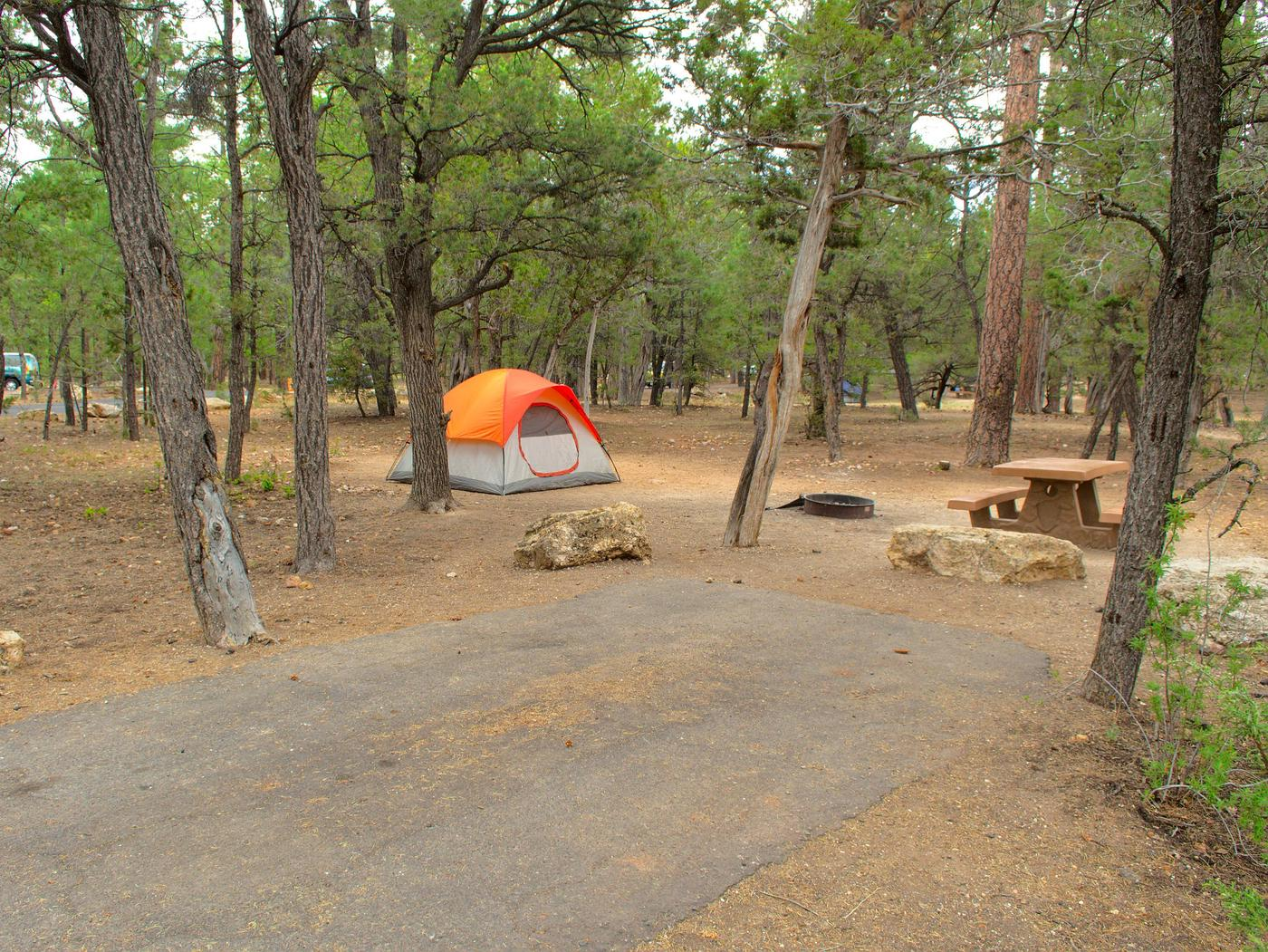 Picnic table, fire pit, tent,  and parking spot, Mather CampgroundThe picnic table, fire pit, tent, and parking spot for Aspen 41, Mather Campground