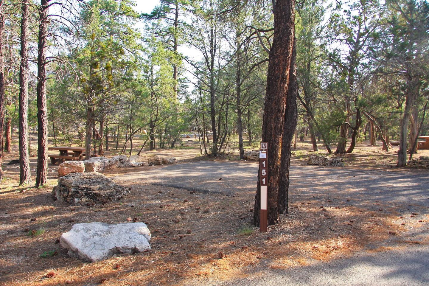 Picnic table, fire pit, tent, and parking spot, Mather Campground