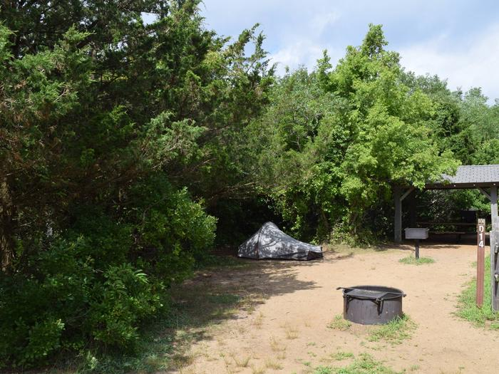 Campsite D14 incorporating a shade structure, BBQ, fire ring, picnic table, food storage locker, and a tentCampsite D14