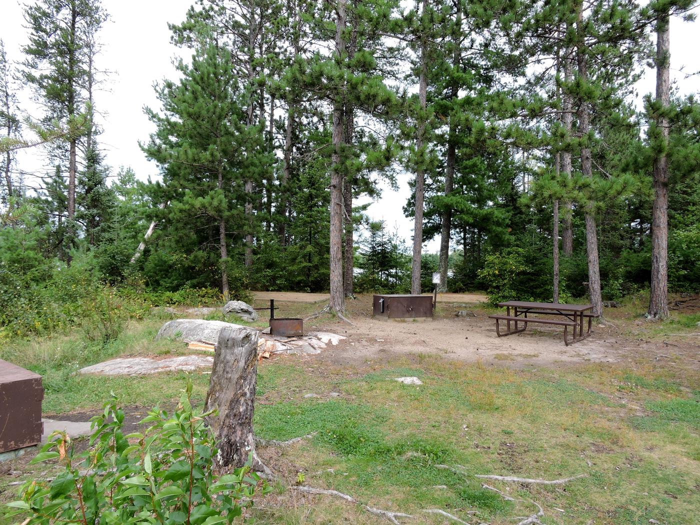 S19 - Wolf IslandView of campsite