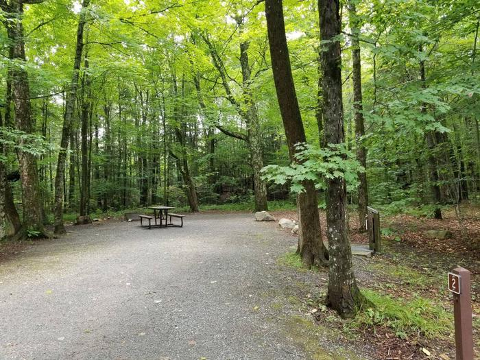 Campsite with picnic table and fire ring in wooded areacampsite 2