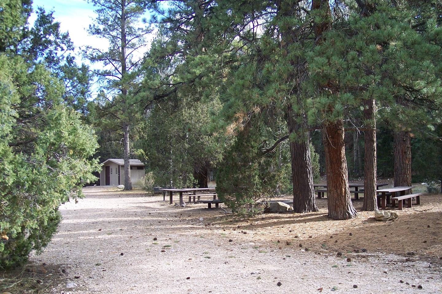 Johns Valley Group Campsite