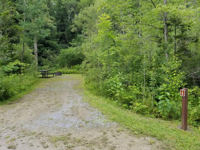 campsite with picnic table, fire pit, and gravel surface in wooded areacampsite 6
