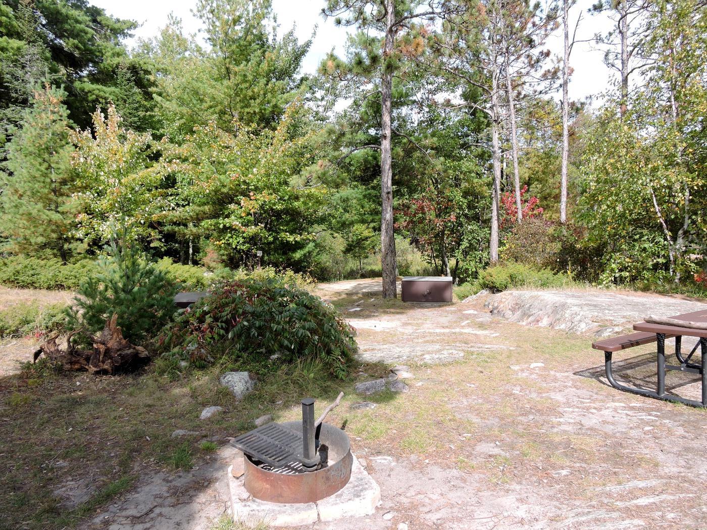 R11 - Dryweed IslandView of campsite