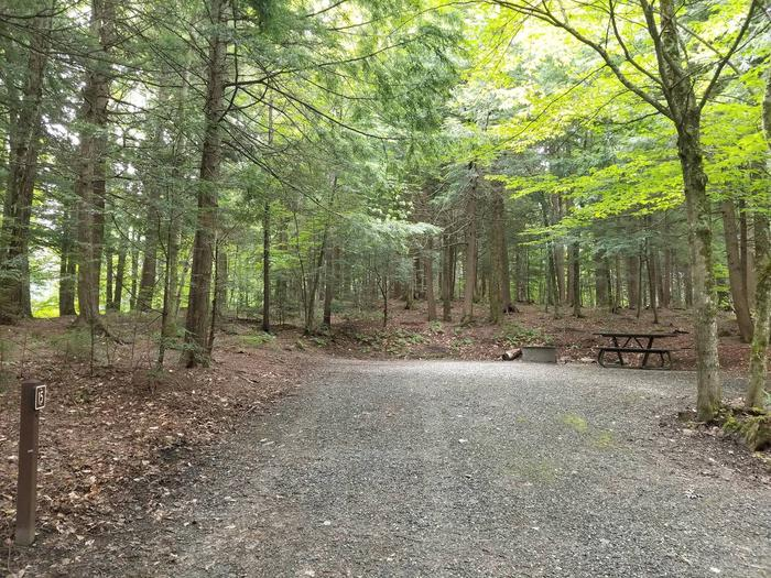 campsite with gravel surfacing, picnic table, and firew ring in wooded areacampsite 15