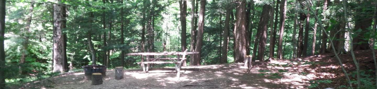 campsite with picnic table and fire ring in wooded areacampsite 18