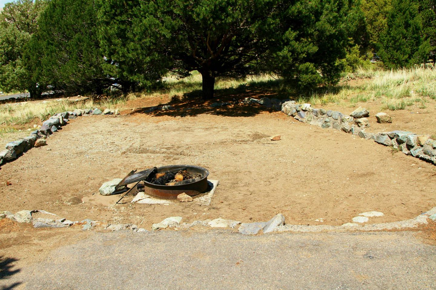 Site #50, Pinon Flats Campground