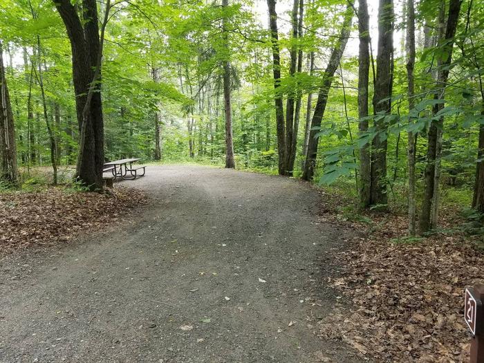 campsite in wooded areacampsite 21