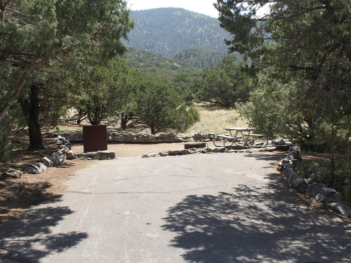 View of Site #49 parking pad and tent site, with bear box, fire ring, and picnic table. Low hanging pine trees cover parking pad.Site #49, Pinon Flats Campground