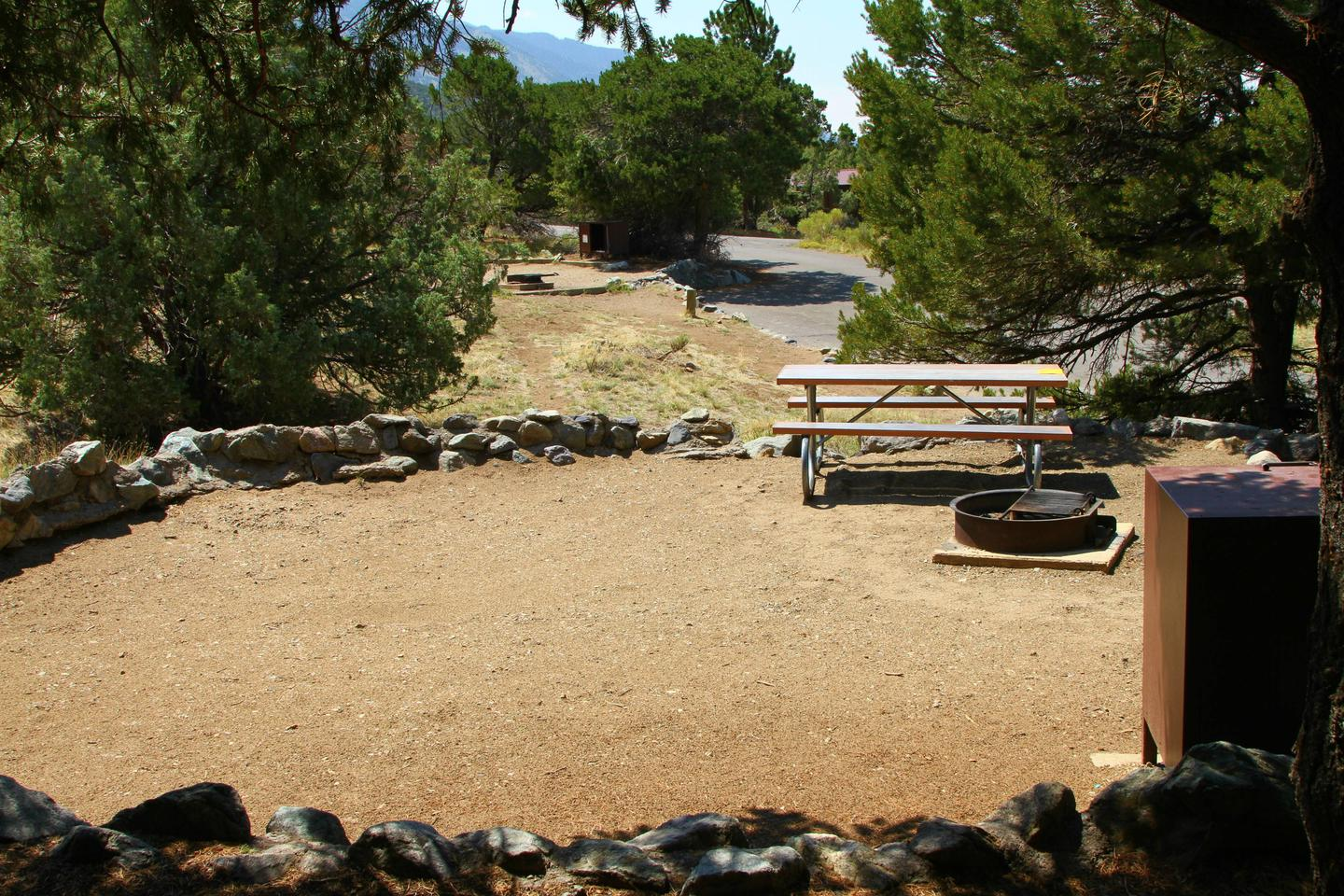 Back view of Site #49 tent pad, bear box, fire ring, and picnic table. Site #47 can be seen in background.Site #49, Pinon Flats Campground