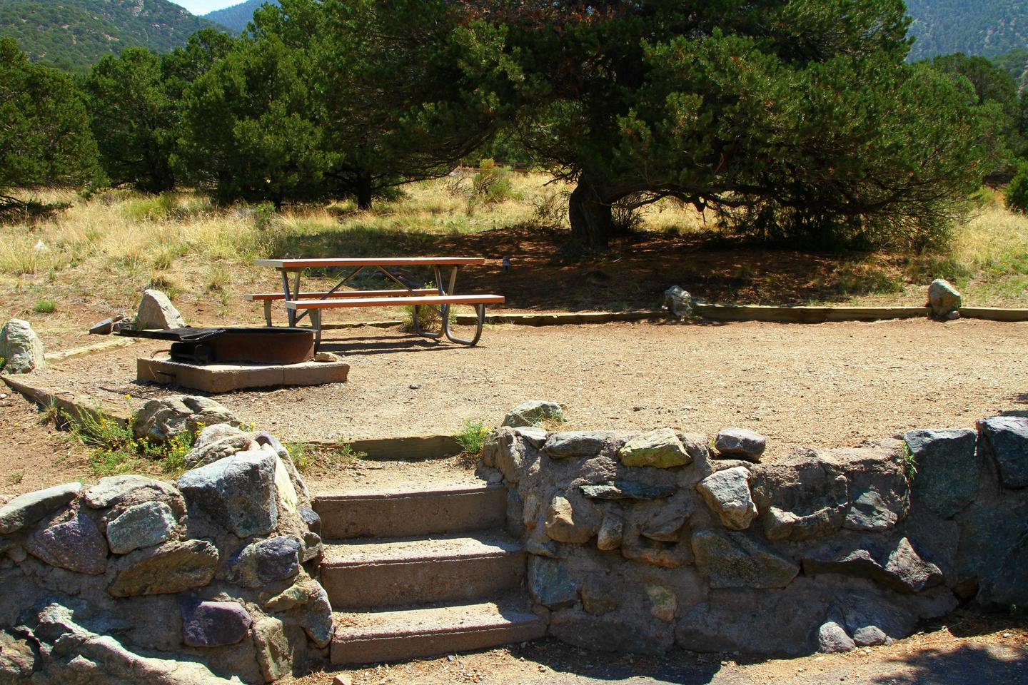 Site #47, Pinon Flats Campground
