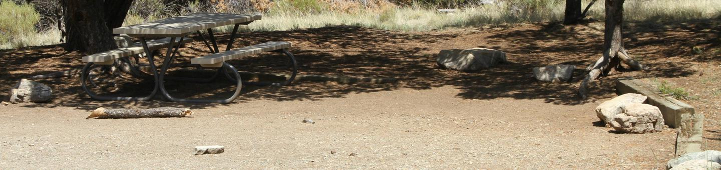 Site #45, Pinon Flats Campground
