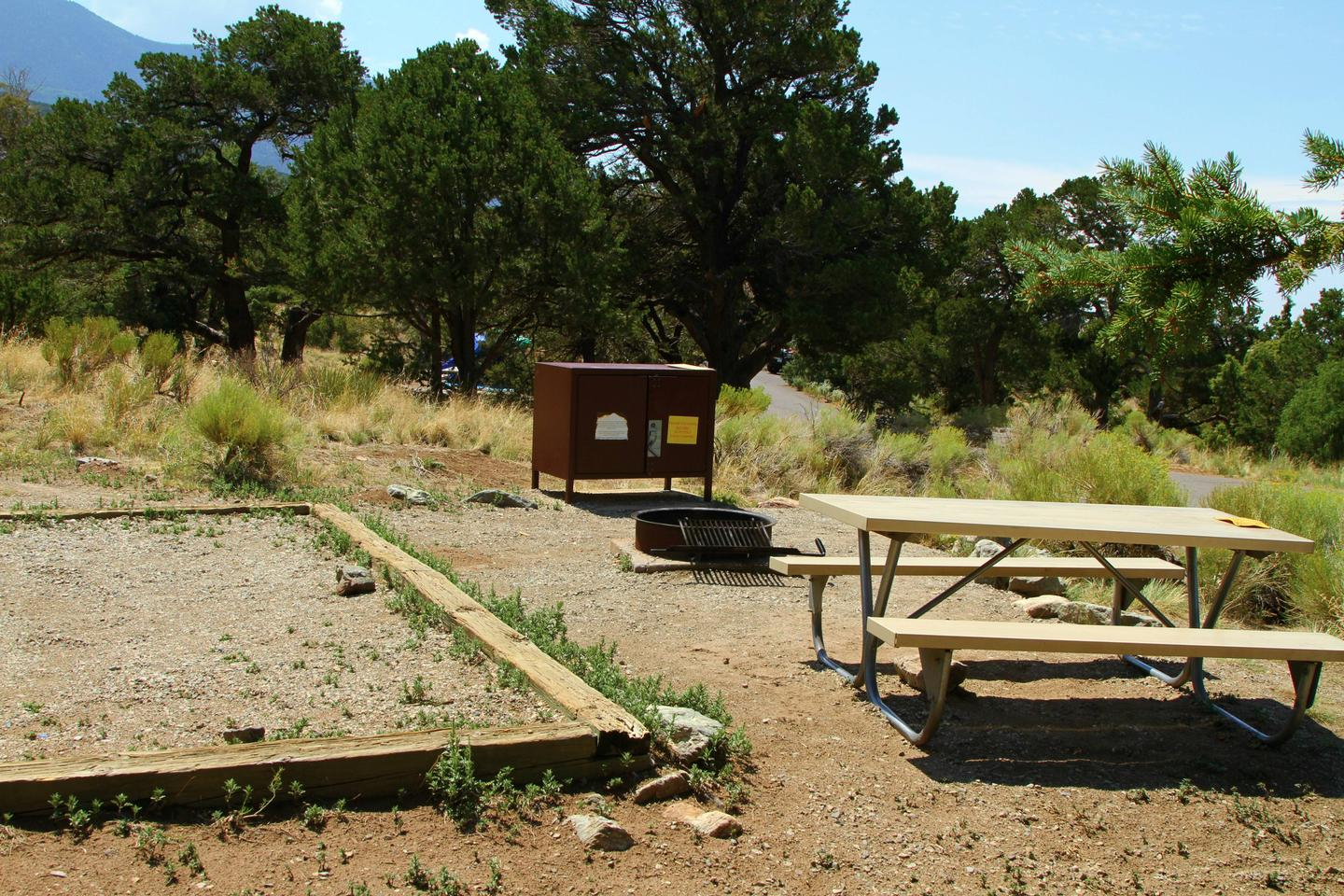 Site #7, Pinon Flats Campground