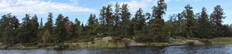 R55 - Jack Pine BenchR55 - Jack Pine Bench campsite on Rainy Lake