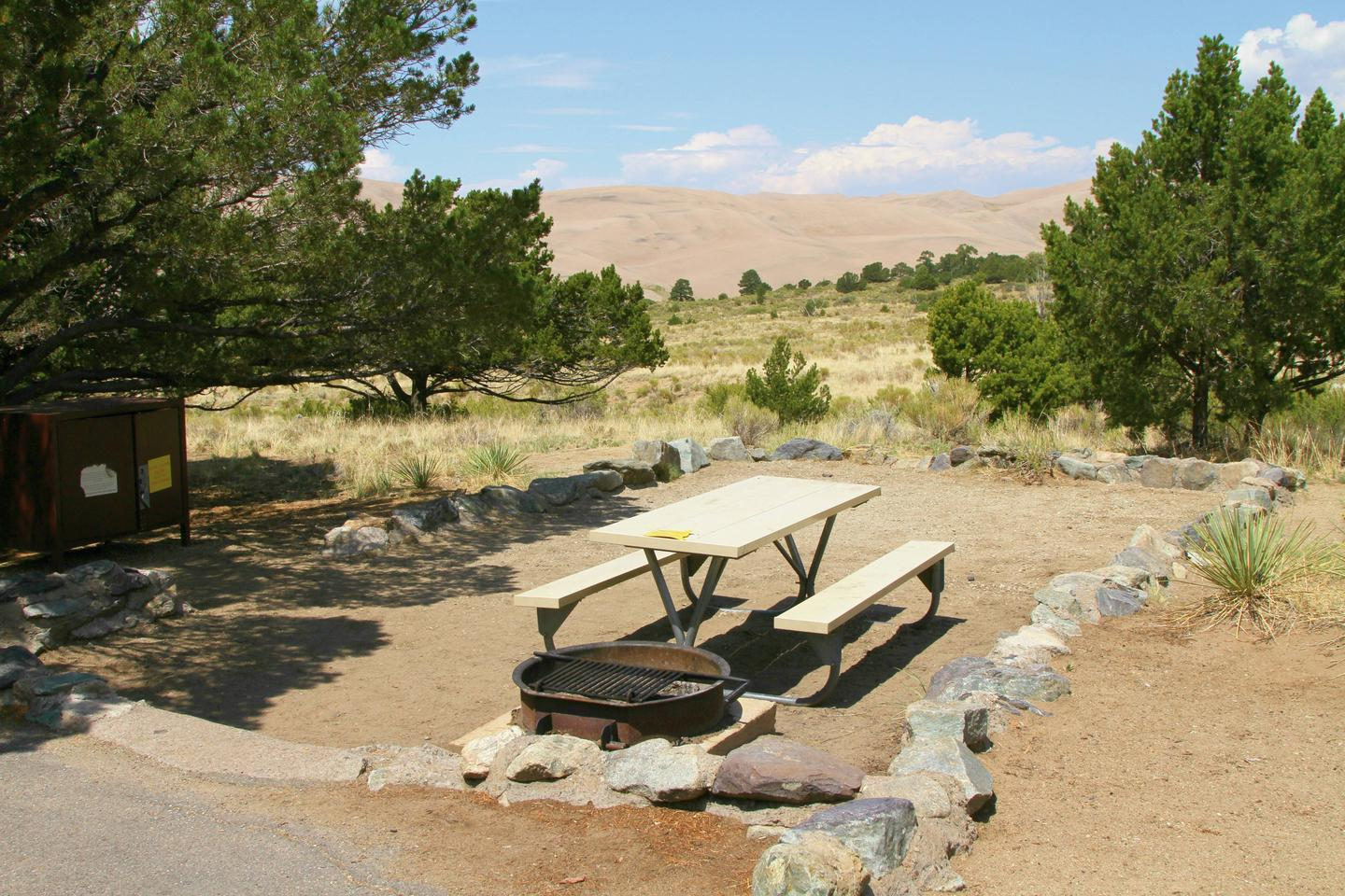 Site #66, Pinon Flats Campground
