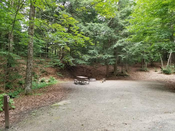 campsite with picnic table, fire ring, and gravel surfacing in wooded areacampsite 24