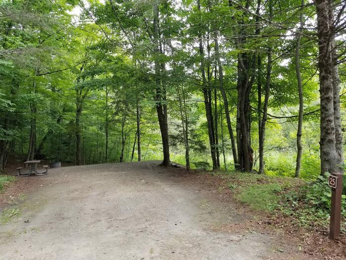 campsite with picnic table, fire ring, and gravel surfacing in wooded areacampsite 25