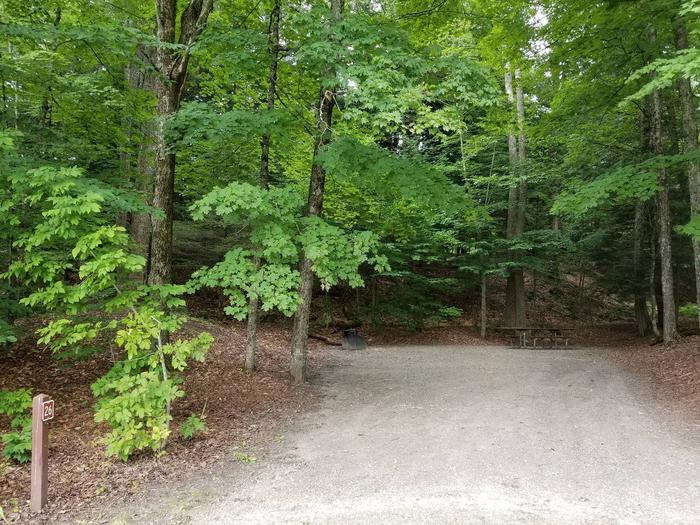 campsite with picnic table, fire ring, and gravel surfacing in wooded areacampsite 26