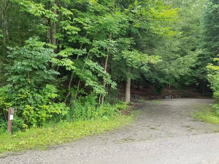 campsite with picnic talbe, fire ring, and gravel surfacing in wooded areacampsite 27