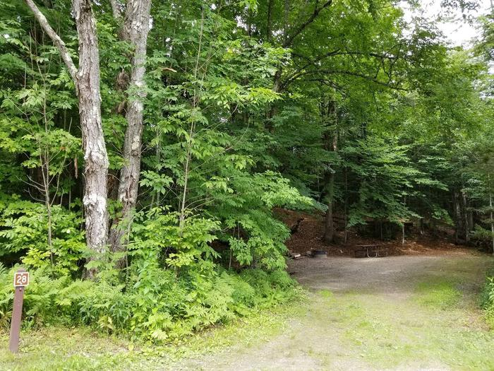 campsite with picnic table, fire ring, and gravel surfacing in wooded areacampsite 28