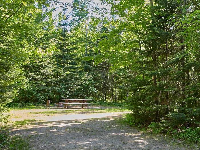 Echo Lake Site 11