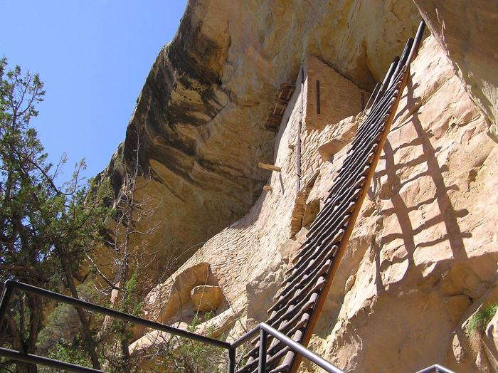32-foot wooden ladder leaning on cliff wall.32-foot entrance ladder to Balcony House