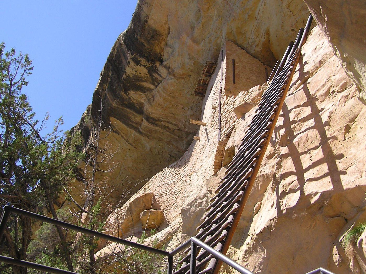 32-foot wooden ladder leaning on cliff wall32-foot entrance ladder used to enter Balcony House.