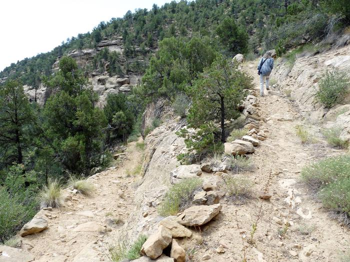 Hiker walking up an unpaved, switchback trailPortion of the trail to Spring House.