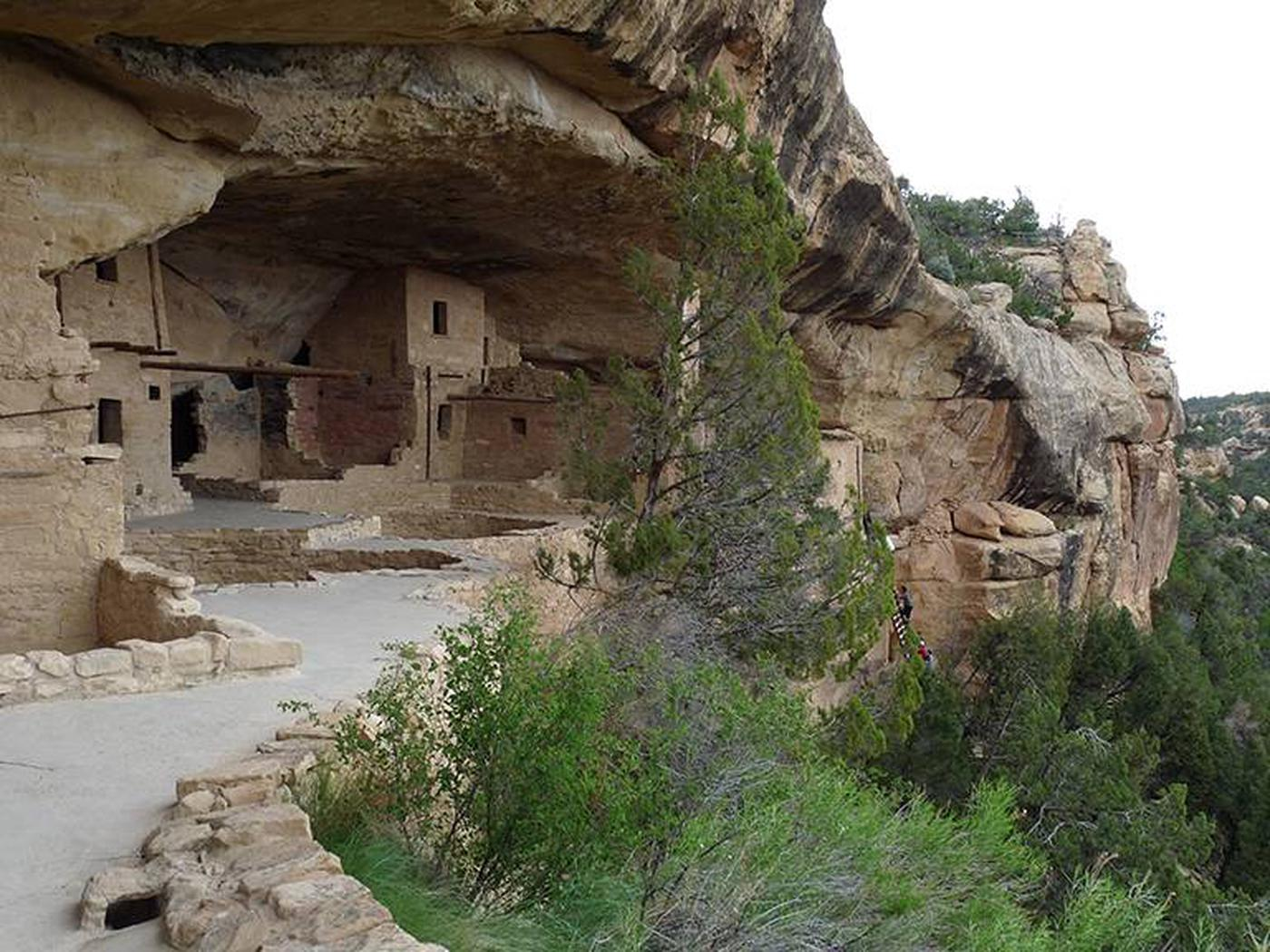 An ancient stone masonry village with visitors climbing the entrance ladder in the distanceVisitors entering Balcony House on a ranger-guided tour.
