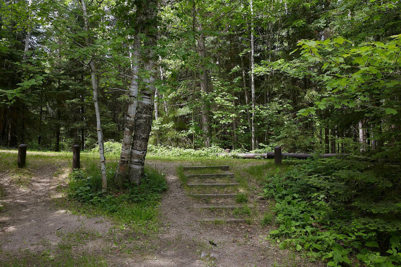 Steps at Site 22Steps