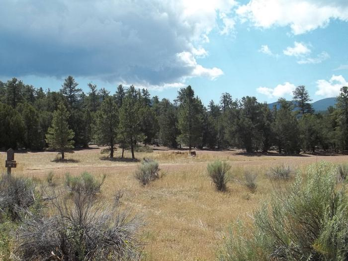 Group site that is tucked away in the pine trees.Arch Dam Campground: Site 3