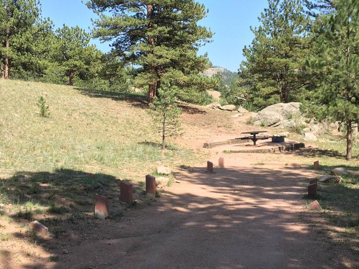 Springer Gulch Campground Site #5