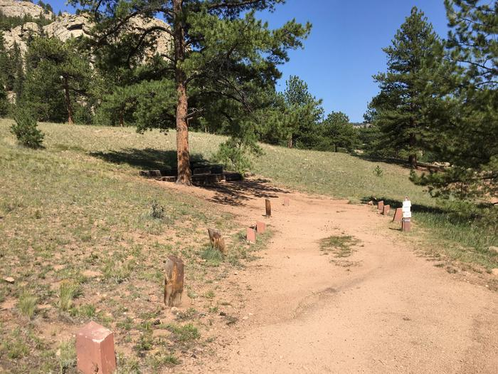 Springer Gulch Campground Site #6