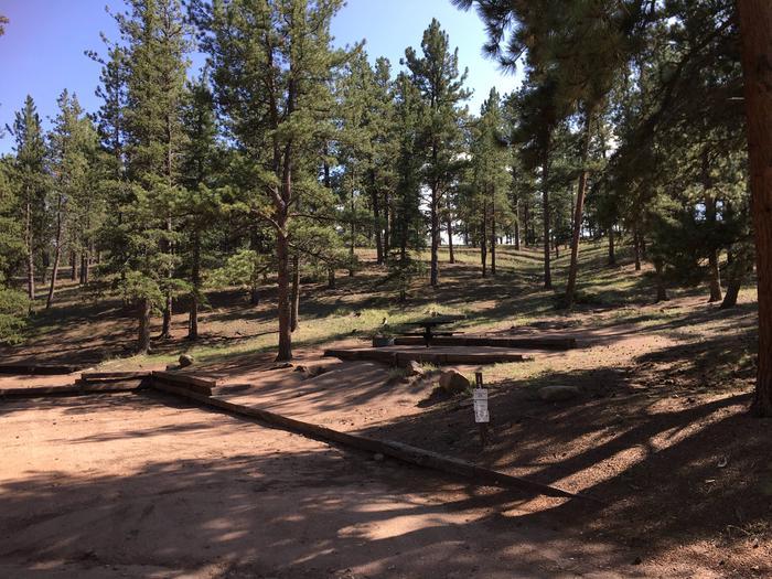 Springer Gulch Campground Site #12
