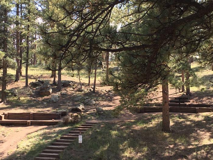 Springer Gulch Campground Site #15