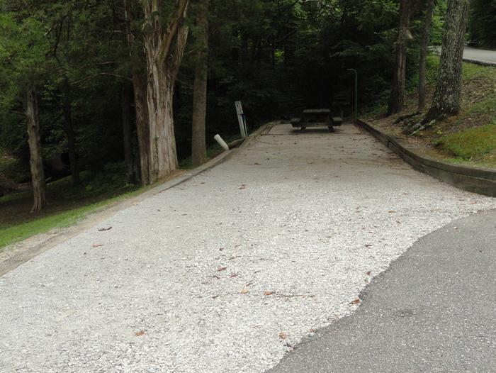 OBEY RIVER PARK SITE #59