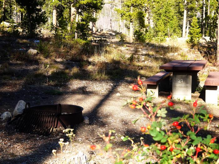 cascade_site27_previewCascade Site 27