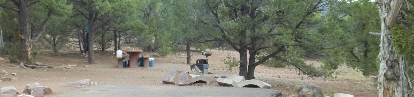 This site has a picnic table behind the parking area.  Cedar Springs Campground: Site 3