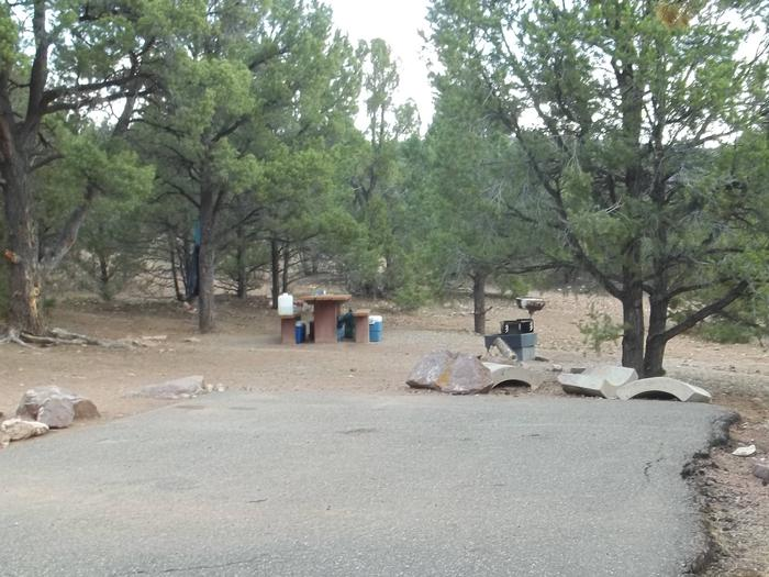 This site has a picnic table behind the parking area.  There are coolers and water jugs around the picnic table.Cedar Springs Campground: Site 3