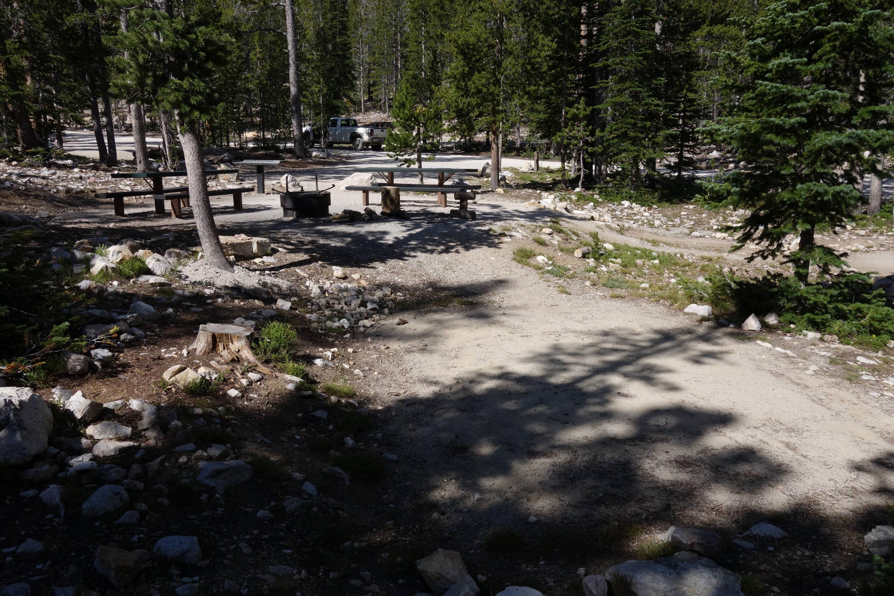 Site 3 (Double Site) - From First Tent Pad Looking Toward CampsiteFrom First Tent Pad Looking Toward Campsite